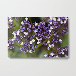 Purple Skittles Metal Print