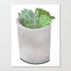 Cactus Plant II Canvas Print