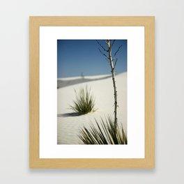 White Sands, March 2007 Framed Art Print