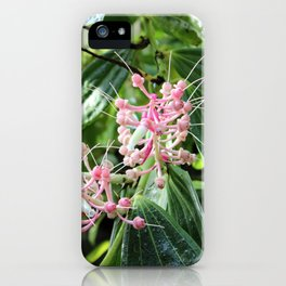 Pink and Green Medinilla Tropical Flower iPhone Case