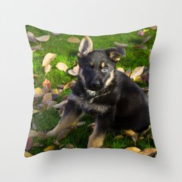 Little German Shepherd puppy Throw Pillow