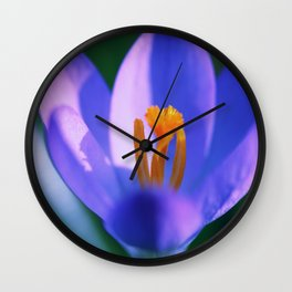 Crocus flowers Wall Clock