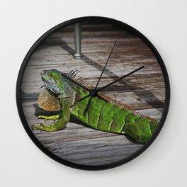 Cayman Iguana I Wall Clock