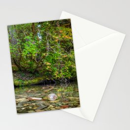 Morning in the Hoh Rain Forest 2 Stationery Cards