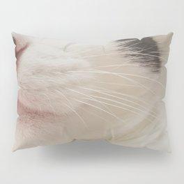 Black Nose Kitten Pillow Sham