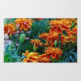 Marigolds in Garden Rug