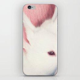 Vanilla iPhone Skin