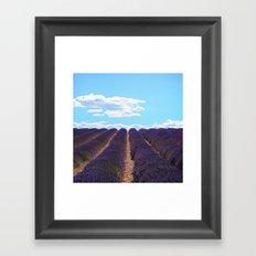 PROVENCE - Lavender | France | Travel | Summer | Purple | Nature | Landscape Framed Art Print