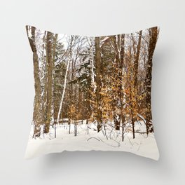 Maple Beech Forest in the Winter Throw Pillow