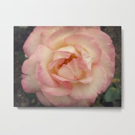 Truths & Roses Metal Print