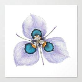 Flower Painting | MORAEA VILLAS | Watercolour | Nature Canvas Print