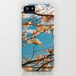 Spring Floral Sky iPhone Case