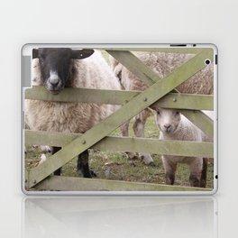 What Are Ewe Looking At? Laptop & iPad Skin