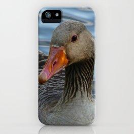 Greylag Goose, Anser anser, Graugans iPhone Case