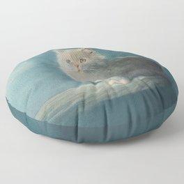 Fluffy Persian Cat Floor Pillow