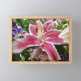 Lovely pink lily Framed Mini Art Print