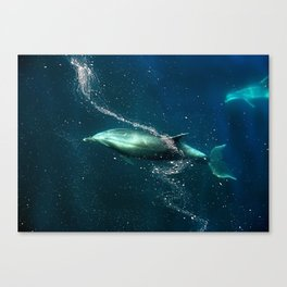 SanJose waters. Canvas Print