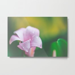 It's a Baby Plumeria, Baby Metal Print