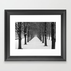 Science Trees in the Snow Framed Art Print