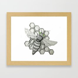 Honeybee Framed Art Print