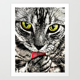 Grooming Tabby Cat Art Print