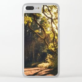 Sunshine Welcomes You Clear iPhone Case