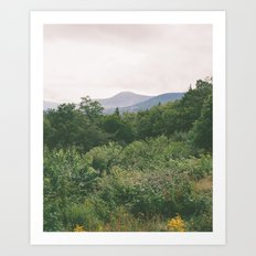 i'm just a flower among mountains Art Print