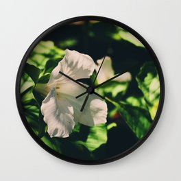 Lily blooming Wall Clock