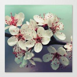 Cherry Blossom, Cherryblossom, Sakura, Vintage Style Canvas Print