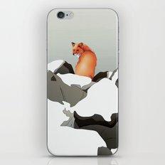 Solitude II iPhone & iPod Skin