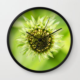 Coneflower Blooming Wall Clock