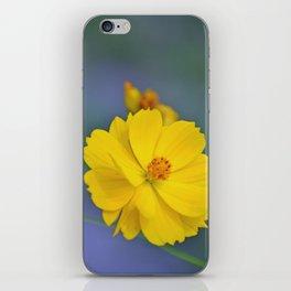 Coreopsis 3 iPhone Skin