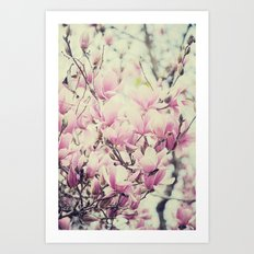 Purple Magnolia Blossoms Spring Botanical Art Print