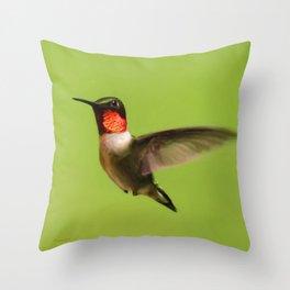 Hummingbird X Throw Pillow