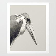 Marabou Stork Art Print
