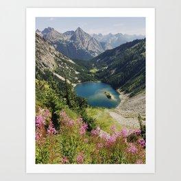 Cascade Summer Wildflowers Art Print