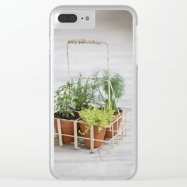 Potted Herbs on Gray Backdrop Clear iPhone Case