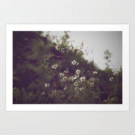 Flowers & Weeds Art Print