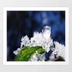 natures design-ice drop Art Print