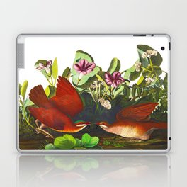 Key-west Dove Laptop & iPad Skin