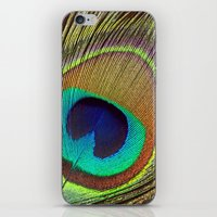 peacock feather iPhone & iPod Skins featuring Peacock Feather by Kim Bajorek