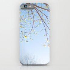 Spring Light. iPhone 6s Slim Case
