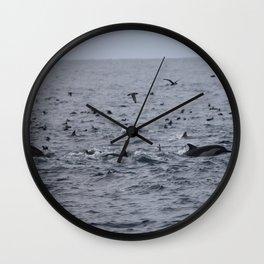 Dolphins & Birds Wall Clock