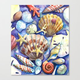 Seashells 3 Canvas Print