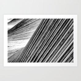 Move Art Monochrome Art Print