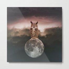 Owl Full Moon Metal Print