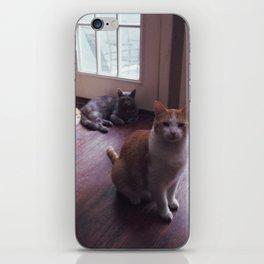 cat squad iPhone Skin