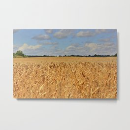 Summer Crop Metal Print