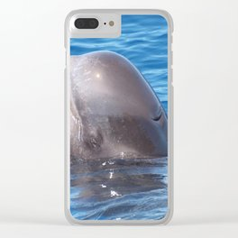 Cute wild pilot whale baby Clear iPhone Case