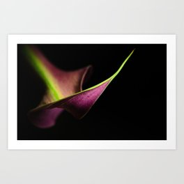 lily perspective Art Print